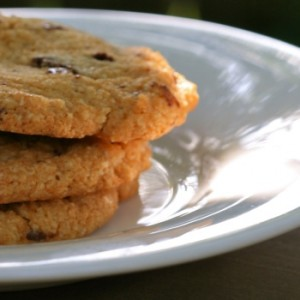 paleo-chocolate-chip-cookies