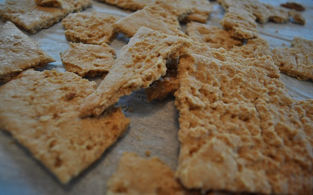 The Best Gluten Free Graham Cracker Recipe On The Web